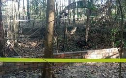 Vụ 9 bộ xương người được phát hiện ở Tây Ninh: Mua bán xương, sọ người