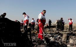 Iran công bố thông tin điều tra ban đầu vụ rơi máy bay Ukraine