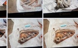 Vụ phát hiện 2 bộ xương người trong lô cao su ở Tây Ninh: Công an phát hiện thêm 7 bộ xương khác