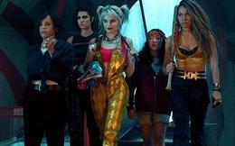 """Dàn nữ diễn viên đình đám góp mặt trong phim riêng của """"cựu người tình"""" Joker"""
