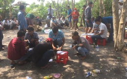 Cảnh sát liên tiếp phá 2 trường gà quy mô lớn tại Tiền Giang