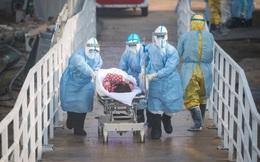 Trung Quốc hoàn thành giải phẫu 2 thi thể nhiễm Covid-19 ở Vũ Hán