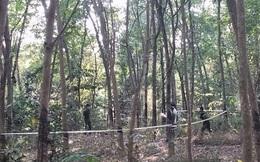 Con hốt hoảng khi tìm thấy cha đã tử vong trong rừng keo, trên người có nhiều vết thương