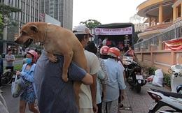 """[Ảnh] Giải cứu nông sản ở Sài Gòn: Người dân chỉ cần nói """"cảm ơn"""" lập tức nhận được dưa hấu miễn phí"""