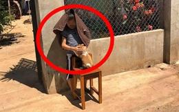 Cậu bé ôm chó đứng phơi nắng giữa trưa, lí do thực sự khiến người lớn bật cười