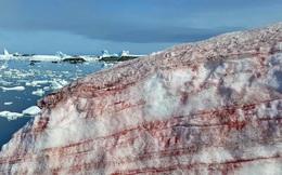 Tuyết máu kỳ lạ xuất hiện ở Nam Cực
