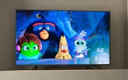 Tận hưởng những ngày hè sôi động bên gia đình cùng TV Sony