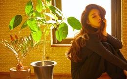 NÓNG: Nữ ca sĩ Chungha phải tự cách ly sau khi hai nhân viên của cô chính thức được xác nhận nhiễm Covid-19