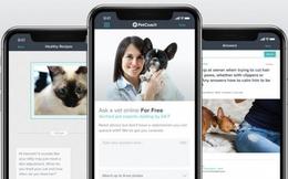 Những ứng dụng siêu hay ho dành riêng cho thú cưng mà các 'con sen' không thể bỏ qua