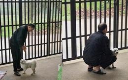 Nhặt con chó mù về nhà, hành động đặc biệt của người bố suốt 2 năm khiến con gái cảm động