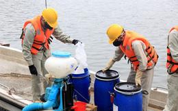 Hà Nội công bố kết luận chính thức việc mua, sử dụng chế phẩm Redoxy-3C làm sạch hồ