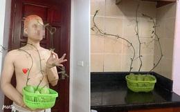 Mua su su về dự trữ tránh dịch, anh chàng giật mình khi thấy cảnh tượng khác lạ trong góc bếp