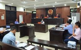 Chính quyền Đà Nẵng kháng cáo bất thành vụ kiện đấu giá đất vàng của Vipico