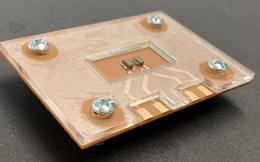 Chế tạo thành công thiết bị theo dõi ung thư qua sóng siêu âm