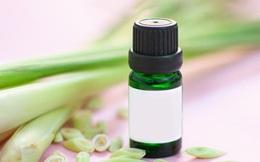 9 lợi ích sức khỏe tuyệt vời của tinh dầu sả sả chanh: Ai cũng nên có một lọ nhỏ trong nhà