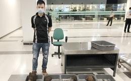 Hành khách mang 29 kg nghi sừng tê giác từ Hàn Quốc về Cần Thơ