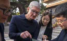 Tim Cook cùng Apple đặt cược mọi thứ vào Trung Quốc và cái kết của 'ván cờ tất tay'
