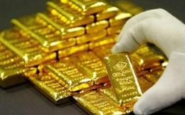 Giá vàng quay đầu tăng sau 2 phiên giảm liên tiếp