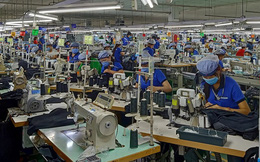 Chính sách phù hợp giảm nguy cơ doanh nghiệp phá sản