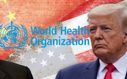 """COVID-19: Giới chuyên gia bức xúc, gọi quyết định cắt tài trợ cho WHO của TT Trump là """"thiển cận"""""""