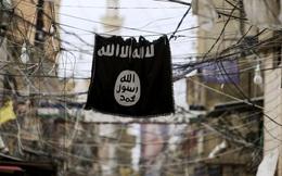 Chiến sự Syria: Hàng loạt đầu sỏ IS bị tiêu diệt trước đòn đáp trả khốc liệt của quân đội Syria