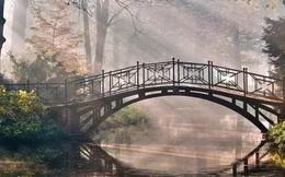 Chọn một cây cầu yêu thích nhất để khám phá vận may của bạn đến từ đâu