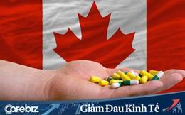 Để tránh xảy ra tình trạng khan hiếm dược phẩm thời dịch bệnh, Canada ban hành đạo luật chưa từng có