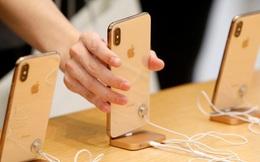 Kinh nghiệm mua iPhone không thể không biết ở hiện tại