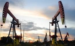 Giá dầu dương trở lại sau phiên xuống mức âm lịch sử