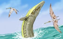 """Giải mã quái vật hành tinh: """"Chúa tể biển cả kỷ Jura"""" này là kẻ quái dị, có đặc điểm giống 3 loài"""