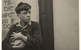 Bán đi con mèo, cậu bé có được cả gia tài, trở thành Thị trưởng và bài học cho mỗi người