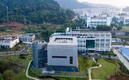 """Covid-19: Lãnh đạo phòng thí nghiệm """"tâm điểm nghi ngờ"""" ở Vũ Hán nêu lý do không thể tạo ra SARS-Cov-2"""