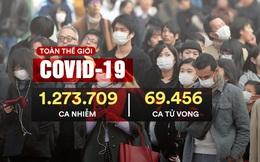 COVID-19: TQ phát hiện SARS-CoV-2 lây lan trong quần thể mèo ở Vũ Hán; Tây Ban Nha đón tin mừng