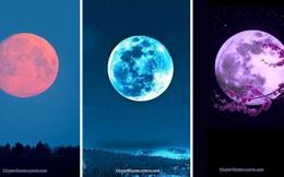 Chọn một Mặt trăng và nhận lấy những lời tiên tri dành cho tương lai của bạn