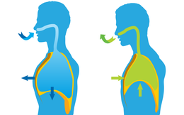 Gan nhiễm độc có thể gây bệnh toàn thân: Đừng bỏ qua 4 việc để thanh lọc từ trong ra ngoài
