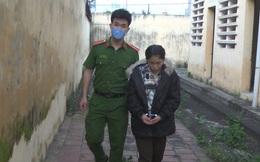 Hưng Yên: Cô gái trẻ giả vờ mua hàng rồi cướp điện thoại của hai thiếu niên