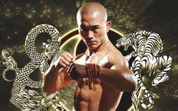 """Thách đấu Mike Tyson, """"đệ nhất Thiếu Lâm"""" bị báo Trung Quốc vạch trần bộ mặt giả dối"""