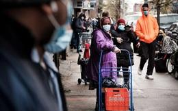 Mỹ: Dòng người xếp hàng chờ ngân hàng thực phẩm phát đồ ăn giữa dịch COVID-19