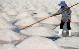 24h qua ảnh: Người phụ nữ làm việc trên cánh đồng muối ở Thái Lan