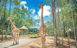 Vinpearl muốn làm khu du lịch sinh thái Vinpearl Safari hơn 1.100 ha ở Hạ Long