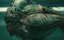 Piranha: Loài cá chỉ vì có lực cắn mạnh gấp 3 lần cá sấu mà mang nhiều tiếng xấu