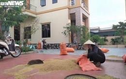 """Hộ cận nghèo có nhà lầu ở Thanh Hóa: """"Có lẽ tôi sẽ chủ động xin ra khỏi danh sách"""""""