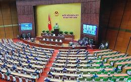 Chủ tịch nước trình Quốc hội phê chuẩn EVFTA