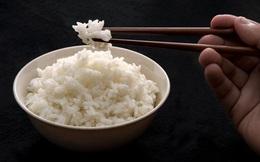 Không ăn cơm để giảm cân là sai chồng lên sai: Hãy ăn tinh bột thông minh như chuyên gia