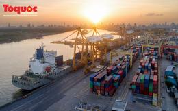 Chuyên gia chỉ ra thế mạnh và việc cần làm của VN khi chuỗi cung ứng tái định hình