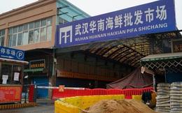 """""""Chợ Vũ Hán không phải nơi bắt nguồn mà là nơi siêu lây lan Covid-19"""""""