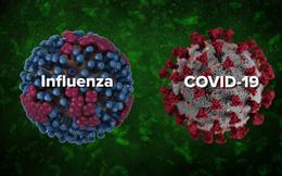 Cúm mùa giết chết nhiều người hơn Covid-19? Xin hãy ngưng so sánh khập khiễng, vì ngay cả điều này cũng không còn đúng nữa rồi
