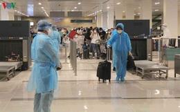 Việt Nam đưa gần 300 công dân ở UAE về nước