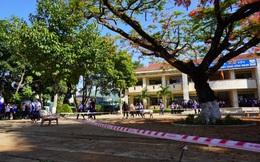Cây phượng cổ thụ tại một trường THCS ở Gia Lai được làm rào chắn