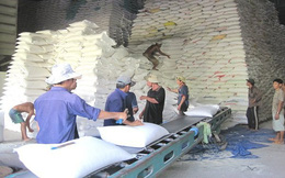 7 Cục Dự trữ Nhà nước cho gửi gạo trái quy định, Bộ Tài chính chuyển hồ sơ sang Bộ Công an điều tra